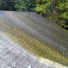 Detergent spreads lifting dirt and making it easier to clean mildew and fungus off roof