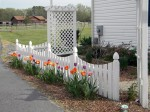 Custom scalloped fence for shade garden