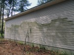 Typical green algae on siding – Georgetown, DE